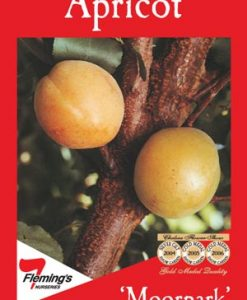 FruitNut_Apricotmoorpark